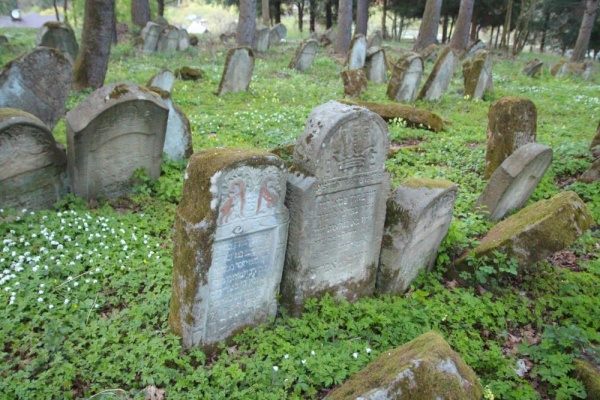 Matzevot at the Jewish cemetery in Lesko