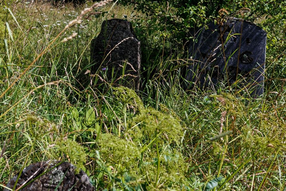 Ошяны известные люди из ошмян фото 642-77