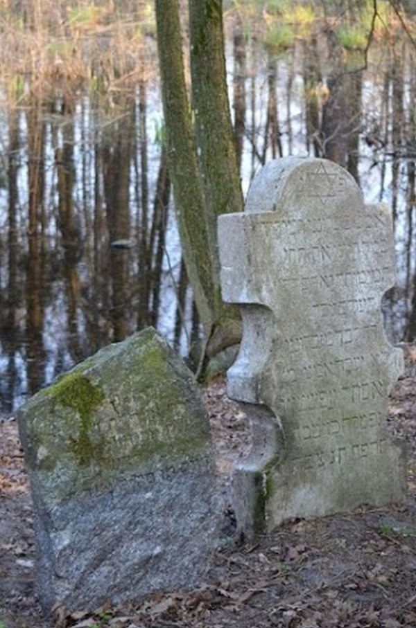 Knyszyn, the Jewish cemetery founded on the levees of royal ponds