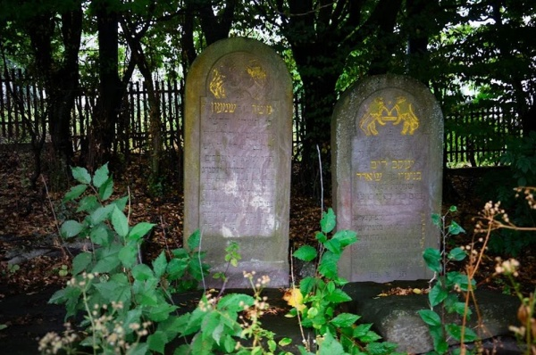 The matzevahs on the Rohatyn Jewish cemetery